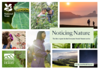 Noticing Nature Report